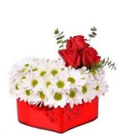 Kalp İçinde Papatya ve Güller